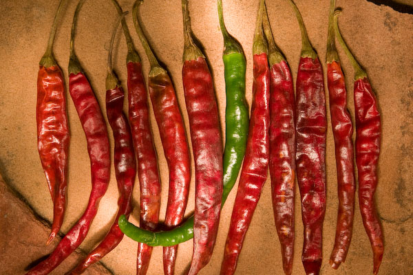Chilaca chile peppers © Ryan Stevenson / All Rights Reserved